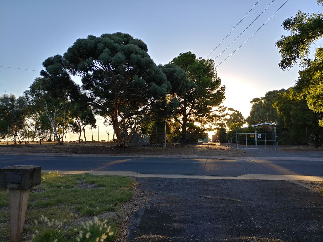 19Mar17 Almost sunset in Reynella picaday 2017pad sunset reynella southaustralia