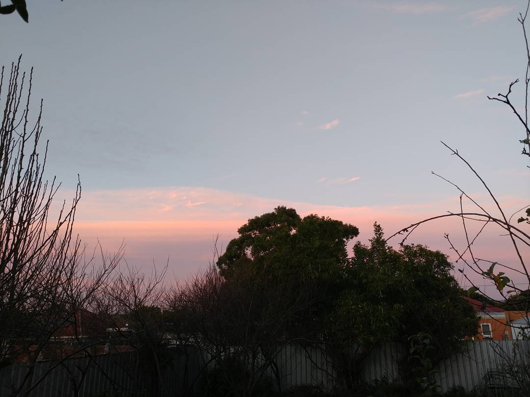20July2017 Beautiful pastel skyline with the outlines of trees Nohellip