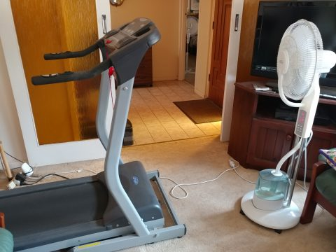 Our treadmill will see extra use while I train